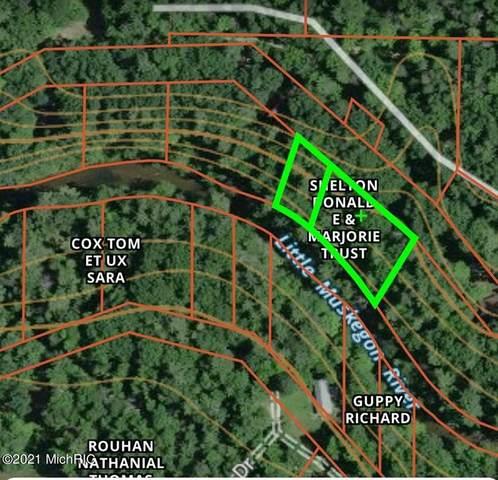 9308 New River Drive, Croton Twp, MI 49337 (#72021004993) :: GK Real Estate Team