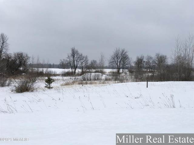 Lot 1 Jambrial Drive, Carlton Twp, MI 49058 (#65021005091) :: The Alex Nugent Team | Real Estate One