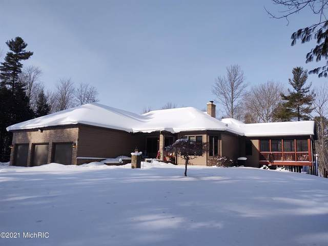 3343 N Jebavy Drive, Hamlin Twp, MI 49431 (#67021005152) :: The Alex Nugent Team | Real Estate One