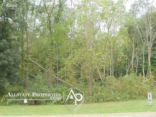 2296 S State Road, Davison Twp, MI 48423 (MLS #5050034748) :: The John Wentworth Group