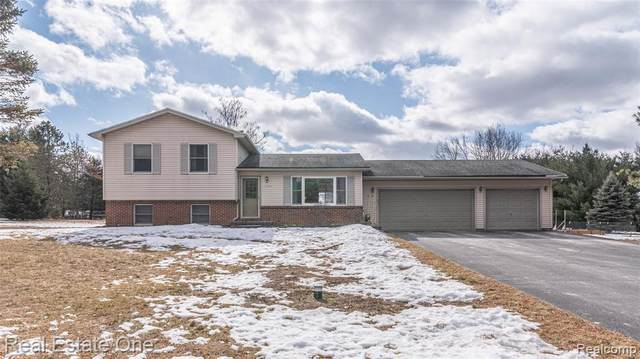 13108 Michalek Lane, Green Oak Twp, MI 48178 (#2210011694) :: Novak & Associates