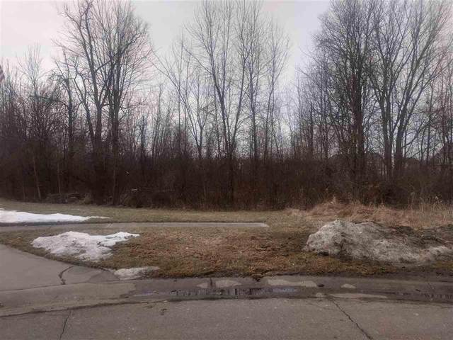 128 Nicole, Linden, MI 48451 (#5050034789) :: Real Estate For A CAUSE