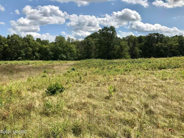 00 State Road, Adams Twp, MI 49242 (#68021005410) :: The Alex Nugent Team | Real Estate One