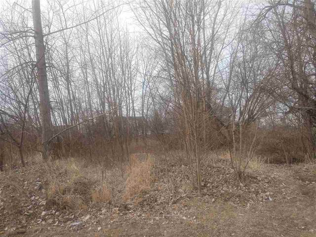 108 Nicole Ln, Linden, MI 48451 (#5050034814) :: Real Estate For A CAUSE