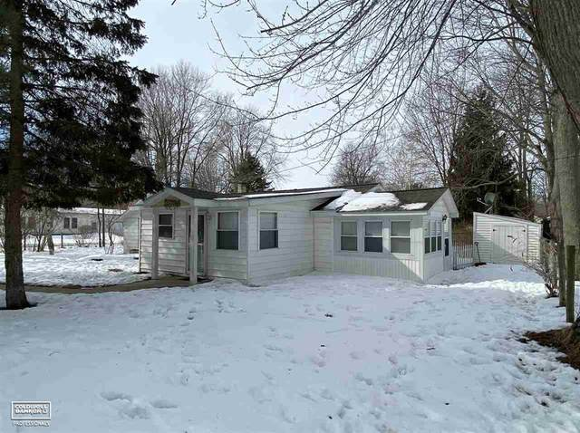 3770 Lakeview Dr, Burtchville Twp, MI 48059 (MLS #58050034869) :: The Toth Team