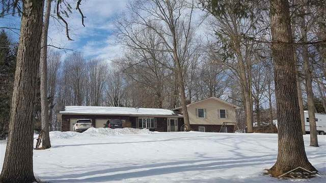 4800 S Orr Road, Fremont Twp, MI 48626 (#61050034876) :: The Merrie Johnson Team