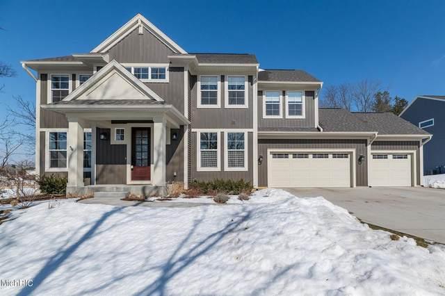 6220 Mcgillicuddy Lane, Portage, MI 49024 (#66021005723) :: The Alex Nugent Team | Real Estate One