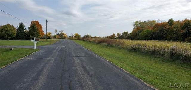 7000 BLK Country Dr., Franklin Twp, MI 49286 (#56050035042) :: The BK Agency