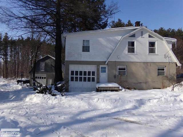 3506 Old M 51, Croswell, MI 48422 (MLS #58050035086) :: The John Wentworth Group