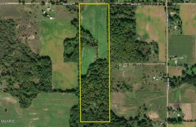 Mauck Road, Adams Twp, MI 49242 (#68021005921) :: The Alex Nugent Team | Real Estate One