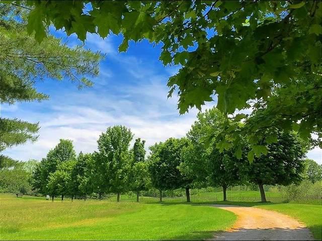 18580 Grass Lake Road, Sharon Township, MI 48158 (#543278993) :: Novak & Associates