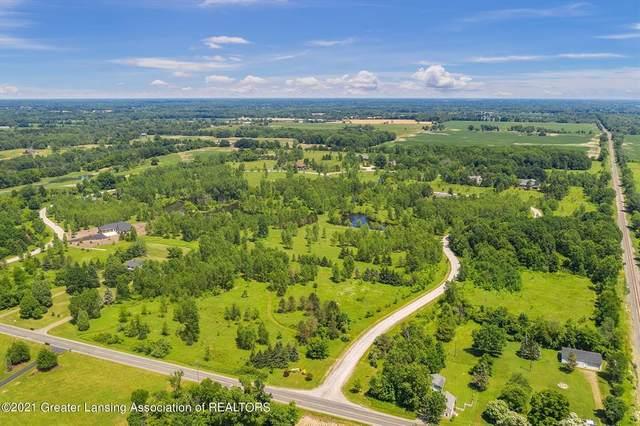 0 Swallowtail Lane, Williamstown Township, MI 48864 (#630000253341) :: Novak & Associates