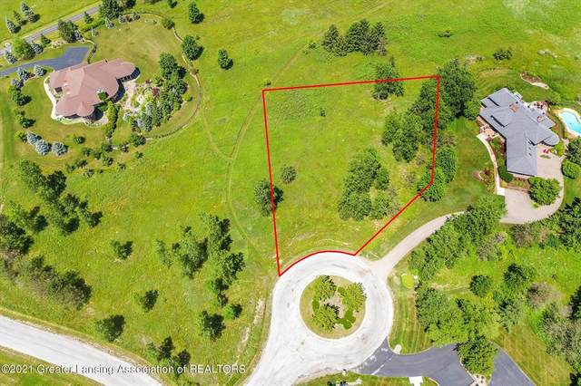 0 Skipper Lane, Williamstown Township, MI 48864 (#630000253344) :: Novak & Associates