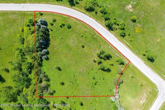 0 Monarch Lane, Williamstown Township, MI 48864 (#630000253346) :: Real Estate For A CAUSE