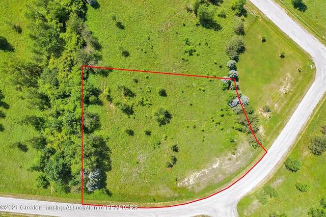 0 Daggertail Lane, Williamstown Township, MI 48864 (#630000253349) :: Novak & Associates