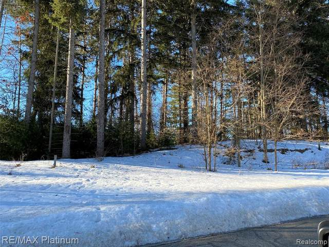 LOT 27 Pinemont Drive, Hamburg Twp, MI 48116 (#2210013443) :: Keller Williams West Bloomfield