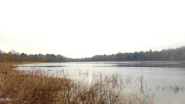 Par A White Lake Drive, Dalton Twp, MI 49457 (#71021006177) :: The BK Agency
