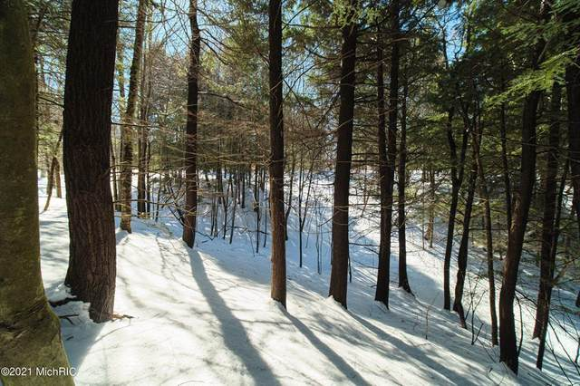 Valleyview Drive, Onekama Twp, MI 49675 (#67021006182) :: The Alex Nugent Team | Real Estate One