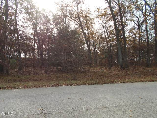 0 Northwoods Drive, Egelston Twp, MI 49442 (#71021006194) :: Real Estate For A CAUSE