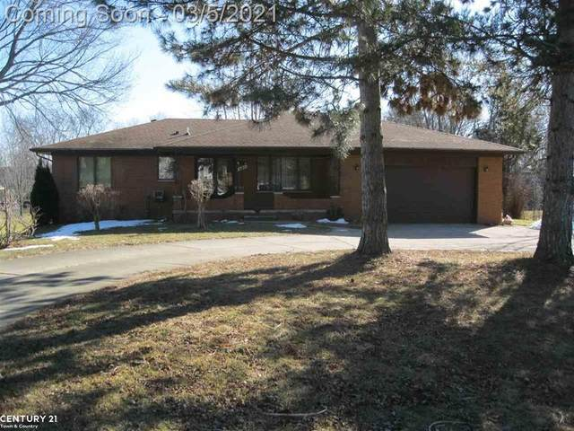 6746 Norton, Troy, MI 48085 (#58050035321) :: Alan Brown Group