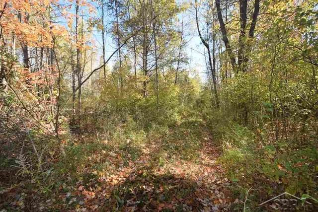 6810 Middle Rd, Hope Twp, MI 48628 (#61050035461) :: Robert E Smith Realty