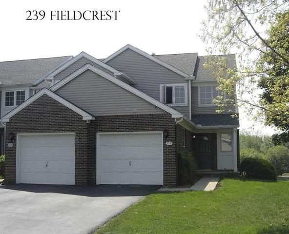 239 Fieldcrest Street, Ann Arbor, MI 48103 (#543278884) :: RE/MAX Nexus