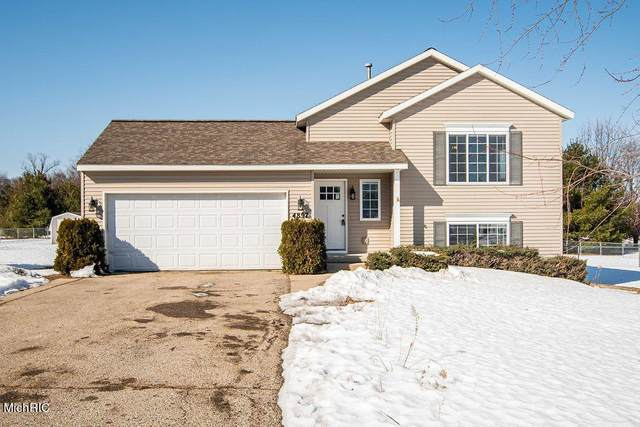 4897 Whitefish Woods Drive, Pierson Twp, MI 49339 (#65021006709) :: The Merrie Johnson Team