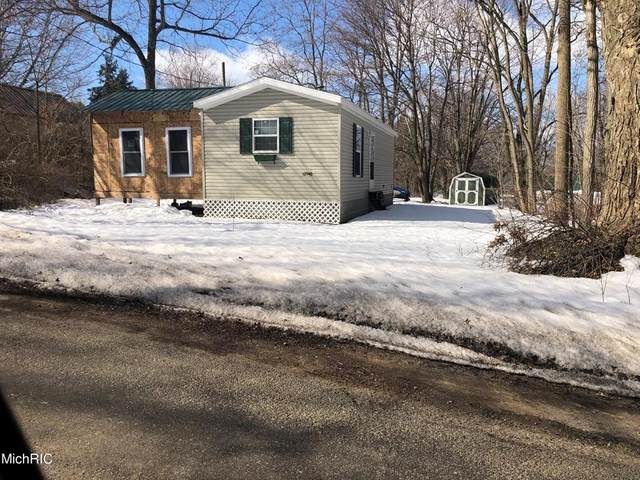12046 Lynn Street, Bear Lake Vlg, MI 49614 (#67021006874) :: Real Estate For A CAUSE