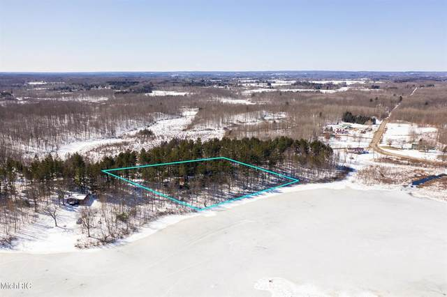 Parcel B S Hillview Lake Drive, COLFAX TWP, MI 49342 (#72021006932) :: Real Estate For A CAUSE