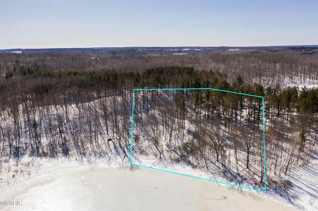 Parcel D S Hillview Lake Drive, COLFAX TWP, MI 49342 (#72021006935) :: Real Estate For A CAUSE
