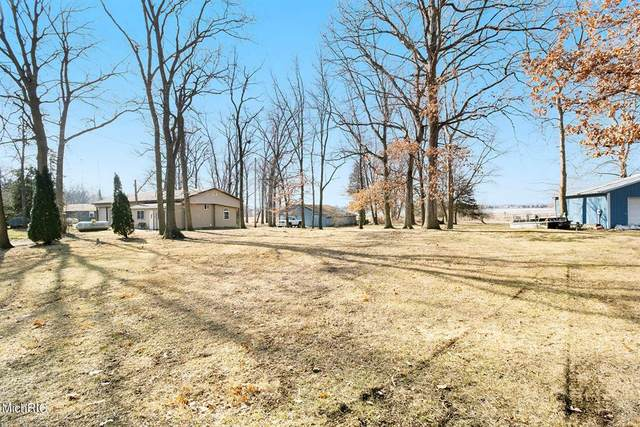 504 Turtle Lake Road, Union Vlg, MI 49094 (#64021007010) :: Robert E Smith Realty