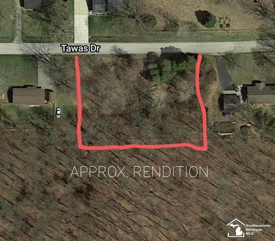 0 Tawas, Whiteford Twp, MI 49267 (MLS #57050036154) :: The John Wentworth Group