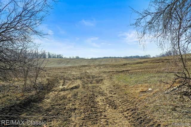 0 Five Mile Road, Salem Twp, MI 48167 (#2210016561) :: Duneske Real Estate Advisors