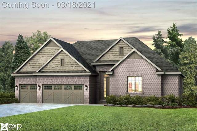 51625 Valley View Court, Chesterfield Twp, MI 48051 (#58050036186) :: Real Estate For A CAUSE