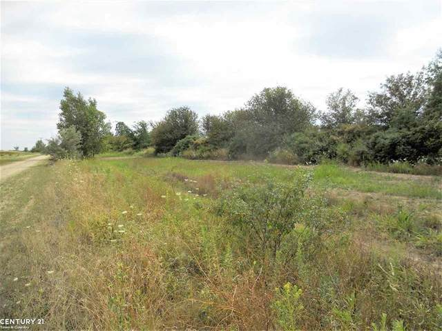 0 Windmill Lane, Imlay Twp, MI 48444 (#58050036635) :: Real Estate For A CAUSE