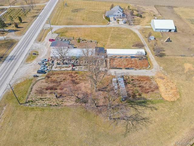 8930 S Custer Road, Monroe, MI 48161 (#2210018410) :: Real Estate For A CAUSE