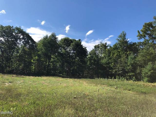 Coates Hwy, Manistee Twp, MI 49660 (MLS #67021008699) :: The John Wentworth Group