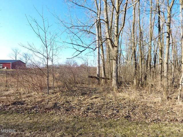 TBD E Main St, Out Of Area, MI 48853 (#59021008796) :: The Alex Nugent Team | Real Estate One