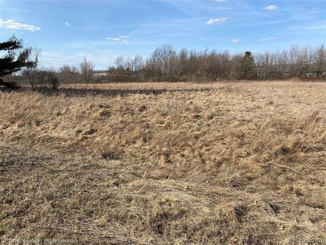0 Clark Road, Lapeer Twp, MI 48446 (#2210018780) :: Real Estate For A CAUSE
