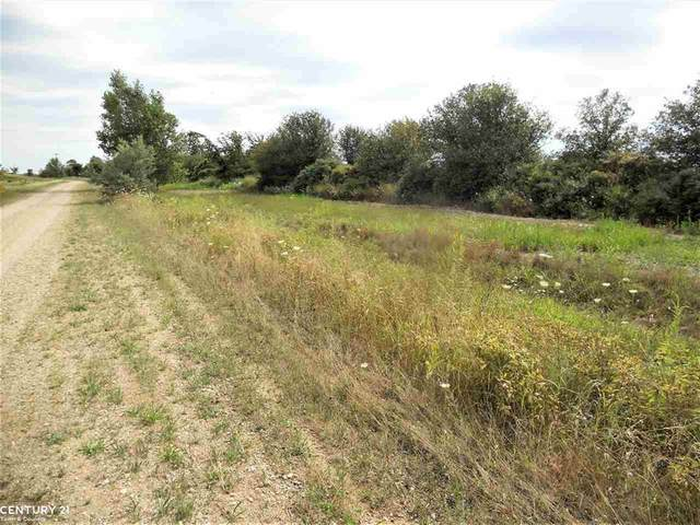 0 Windmill Ln, Imlay Twp, MI 48444 (#58050036865) :: Real Estate For A CAUSE