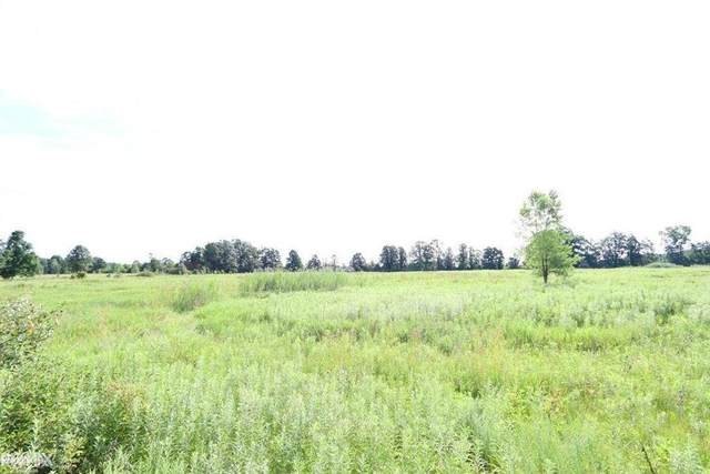 Windmill Ln, Imlay Twp, MI 48444 (#58050036872) :: Real Estate For A CAUSE