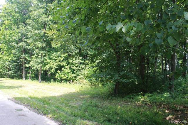 Lot B Bond Trail, Independence Twp, MI 48348 (#2210019086) :: Duneske Real Estate Advisors