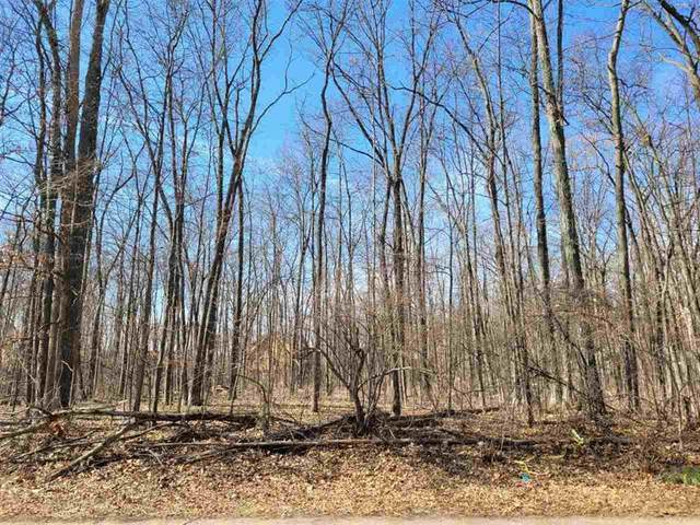 LOT 19 Kingsley Dr, Cambridge, MI 49265 (#55202100696) :: The Alex Nugent Team | Real Estate One