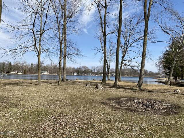 Swan Ln, OVID TWP, MI 49036 (#62021009117) :: Real Estate For A CAUSE
