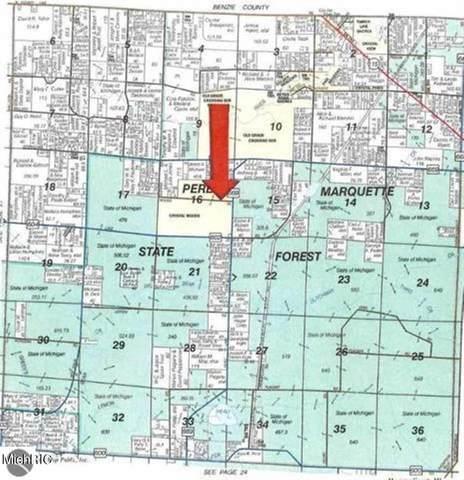 14187 Woods Trail, SPRINGDALE TWP, MI 49683 (MLS #67021009142) :: The John Wentworth Group