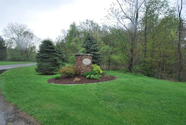 6856 Fallen Leaf Trail, Saugatuck Twp, MI 49408 (#71021009232) :: Robert E Smith Realty