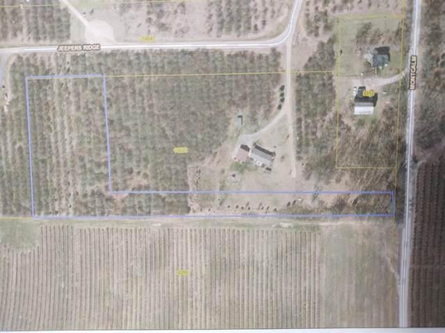 Par 2 Jeepers Ridge, Oakfield Twp, MI 48838 (#65021009959) :: Keller Williams West Bloomfield