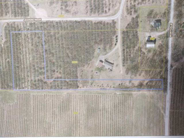 Par 2 Jeepers Ridge, Oakfield Twp, MI 48838 (#65021009959) :: The Merrie Johnson Team