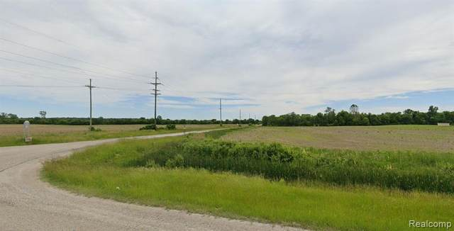 18007 Tecumseh Road, Dundee Twp, MI 48131 (#2210021470) :: Real Estate For A CAUSE