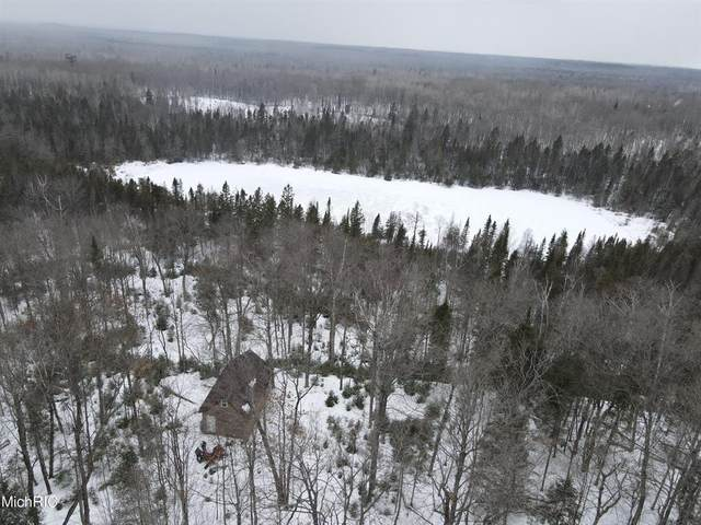 16352 S Scenic Drive, Barbeau, MI 49710 (#71021010517) :: Real Estate For A CAUSE